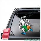 Кролик баскетболист